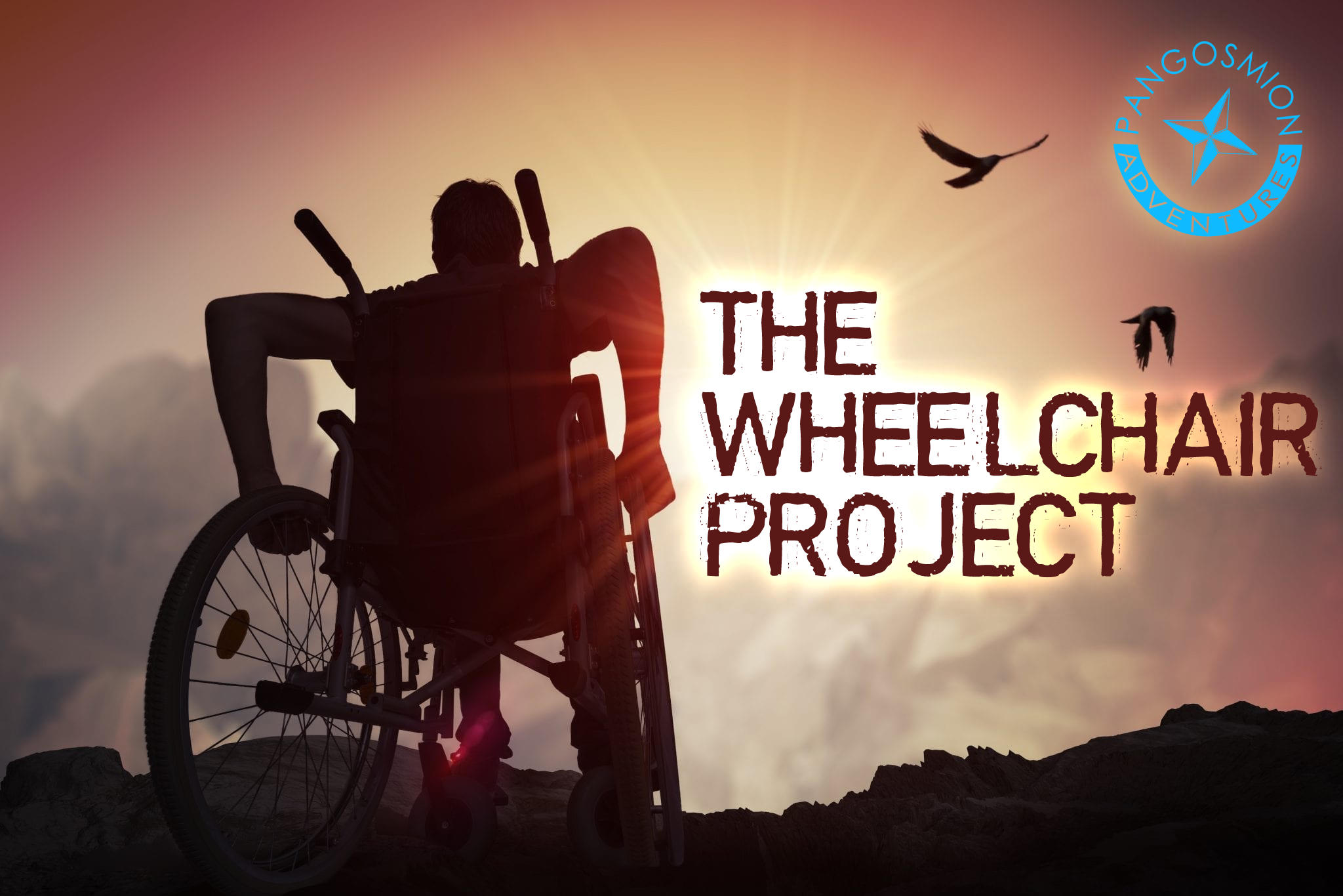The Wheelchair Project